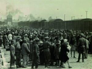L'arrivée des juifs hongrois à Birkenau