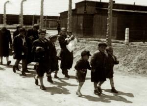 Femmes et enfants Juifs y compris les nouveaux-nés acheminés vers les chambres à gaz